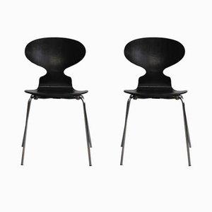Vintage Modell 3100 Ant Stühle von Arne Jacobsen für Fitz Hansen, 1967, 2er Set