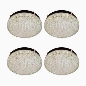 Plafones de techo o pared de vidrio de N. Leuchten, años 60. Juego de 4