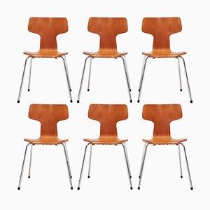 Model 3103 Beech T Chairs by Arne Jacobsen for Fritz Hansen, 1981, Set of 6