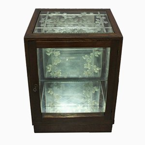 Art Nouveau Display Cabinet by Villepange