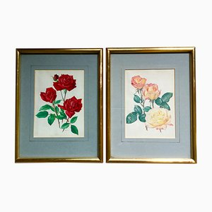 Imprimés Peace Rose Encadrés de Christian Dior, Set de 2