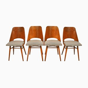 Side Chairs by Oswald Haerdtl for TON, 1960s, Set of 4