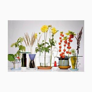 Stampa Hidden Vase di Chris Kabel