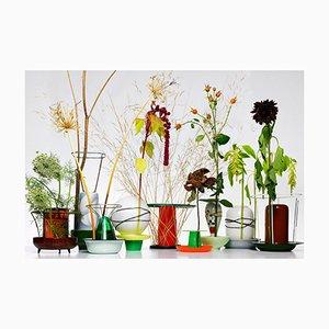 Tirage Hidden Vase par Chris Kabel