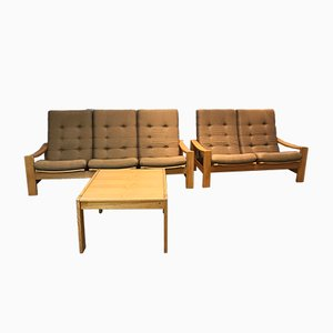 Vintage Swedish Living Room Set by Yngve Ekstrom for Swedese