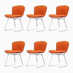 Orange Beistellstühle aus Draht von Harry Bertoia für Knoll International, 1960er, 6er Set