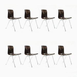 Industrielle niederländische S25 Schulstühle von Galvanitas, 1970er, 8er Set