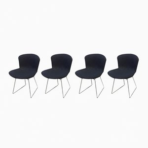 Wire Chairs by Harry Bertoia for Knoll International, 1969, Set of 4