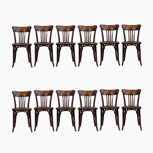 Bugholz Coffee House Chairs, 1910er, 12er Set
