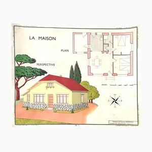 Vintage Haus & Außenbereich Lehrtafel, 1960er