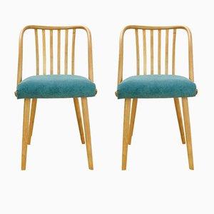 Mid-Century Stühle von Antonin Suman für TON, 1960er, 2er Set