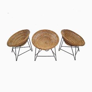 Französische Rattan Stühle, 1950er, 3er Set