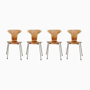 Chaise 3105 Munkegaard en Teck par Arne Jacobsen pour Fritz Hansen