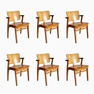 Vintage Domus Stühle von Ilmari Tapiovaara für Knoll International, 6er Set