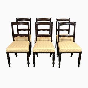 Mahagoni Esszimmerstühle, 1930er, 6er Set