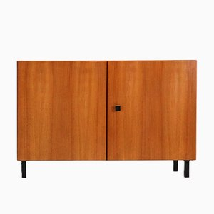 Mid-Century Modern 2-Door Cabinet in Walnut