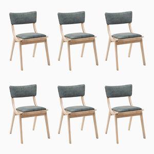 Vintage Stühle von Fabryka Mebli Giętych, 6er Set