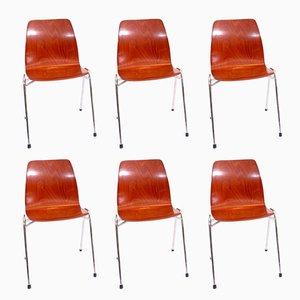 Esszimmerstühle von Elmar Flötotto für Pagholz Flötotto, 1970er, 6er Set