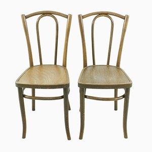 Bugholz Stühle, 1920er, 2er Set