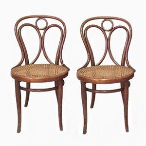 Antike Schilfrohr Esszimmerstühle von Thonet, 1900er, 2er Set