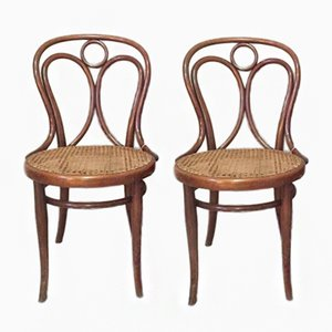 Antique Cane Dining Chairs from Thonet, 1900s, Set of 2
