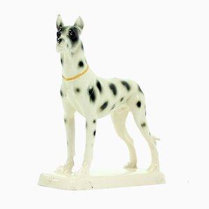 Porzellan Skulptur mit deutscher Dogge von Hertwig & Co, 1940er