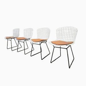 Weiße & Schwarze Wire Stühle von Harry Bertoia für Knoll, 4er Set