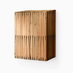 Bleed Large Wall Cabinet by Peter Marigold