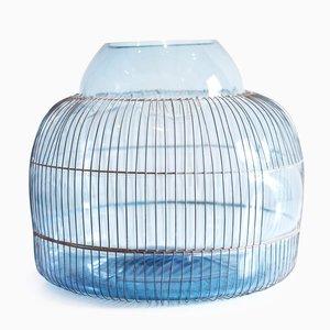 Out of the Cage Bleu par Gala Fernandez