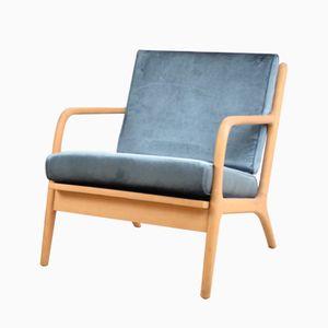 Czech Armchairs with Blue Velvet Upholstery