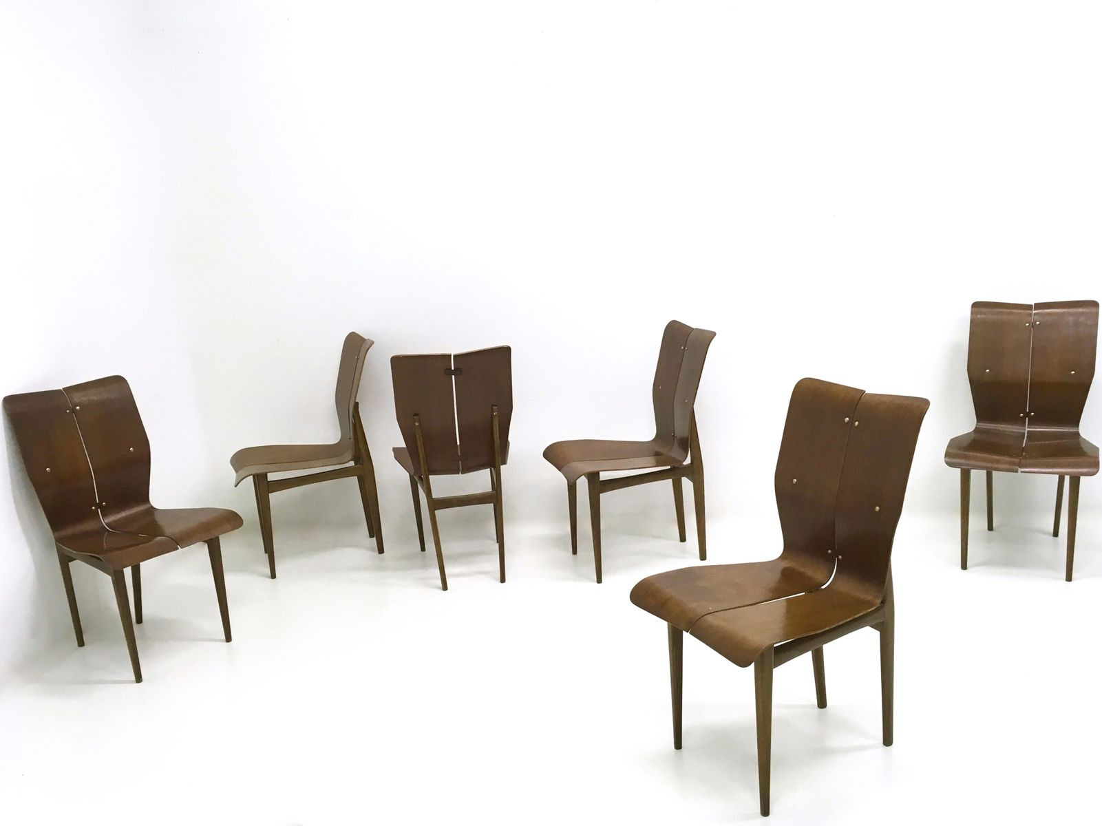 Vintage Curved Wood Dining Chairs, 1950s, Set Of 6 For Sale At Pamono