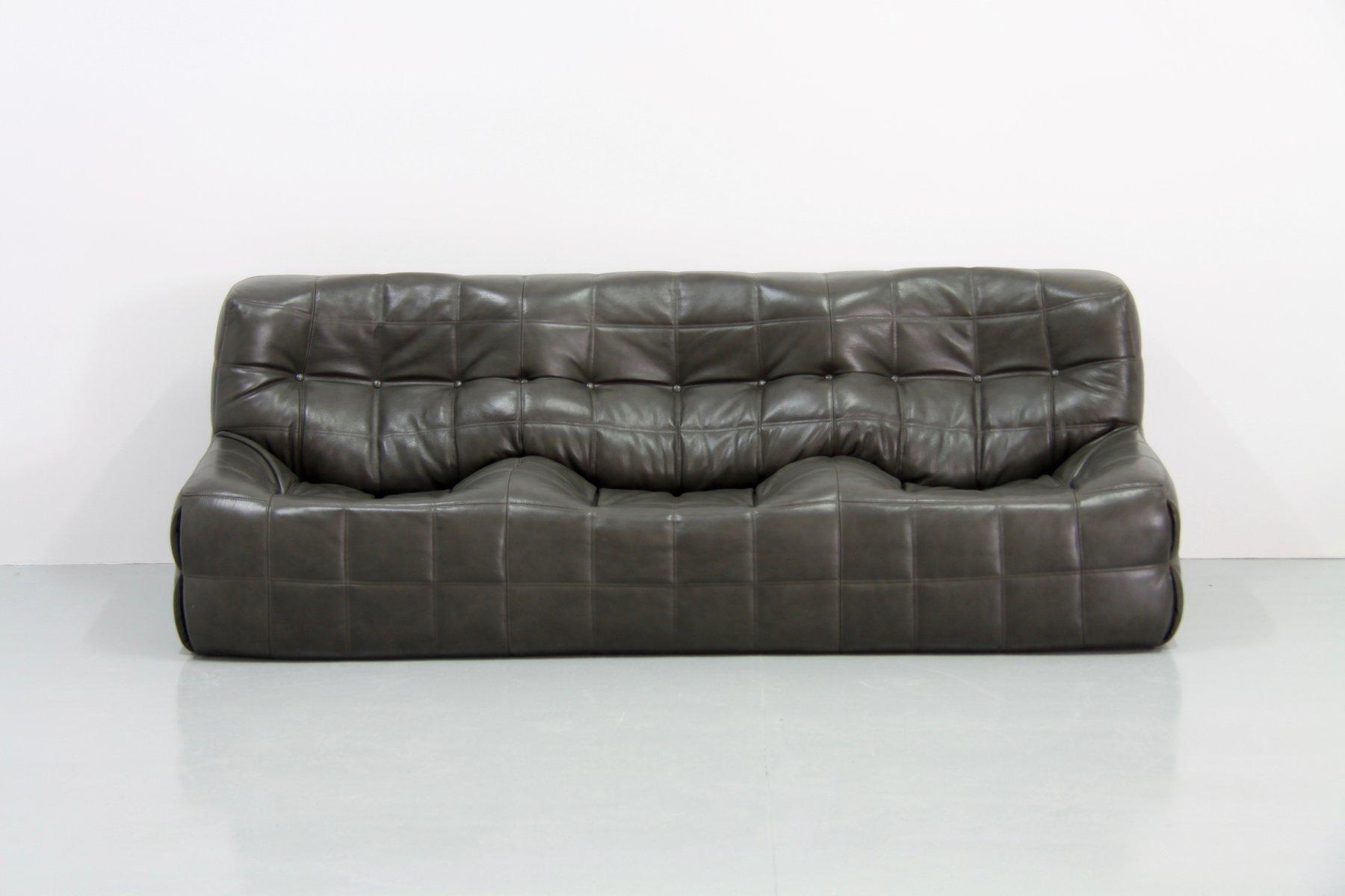 salon ligne roset awesome great meuble salon ligne roset lyon with salon gris et vert anis with. Black Bedroom Furniture Sets. Home Design Ideas