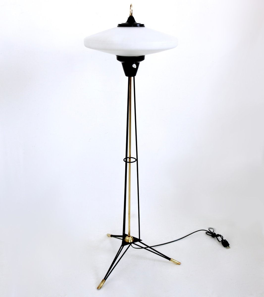 Italian floor lamp with opaline glass shade by stilnovo 1950s for italian floor lamp with opaline glass shade by stilnovo 1950s mozeypictures Images
