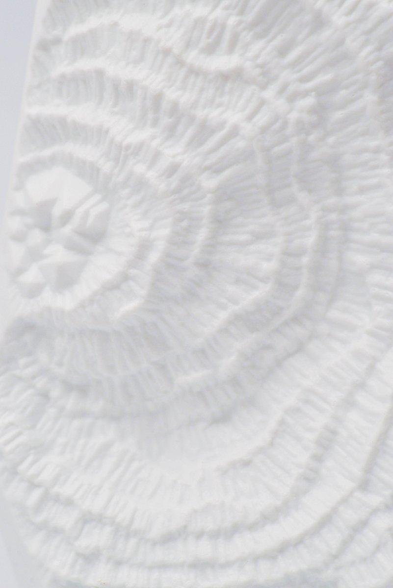 Wei e vase aus biskuitporzellan mit fossilie dekor von for Dekor von zierpflanzen