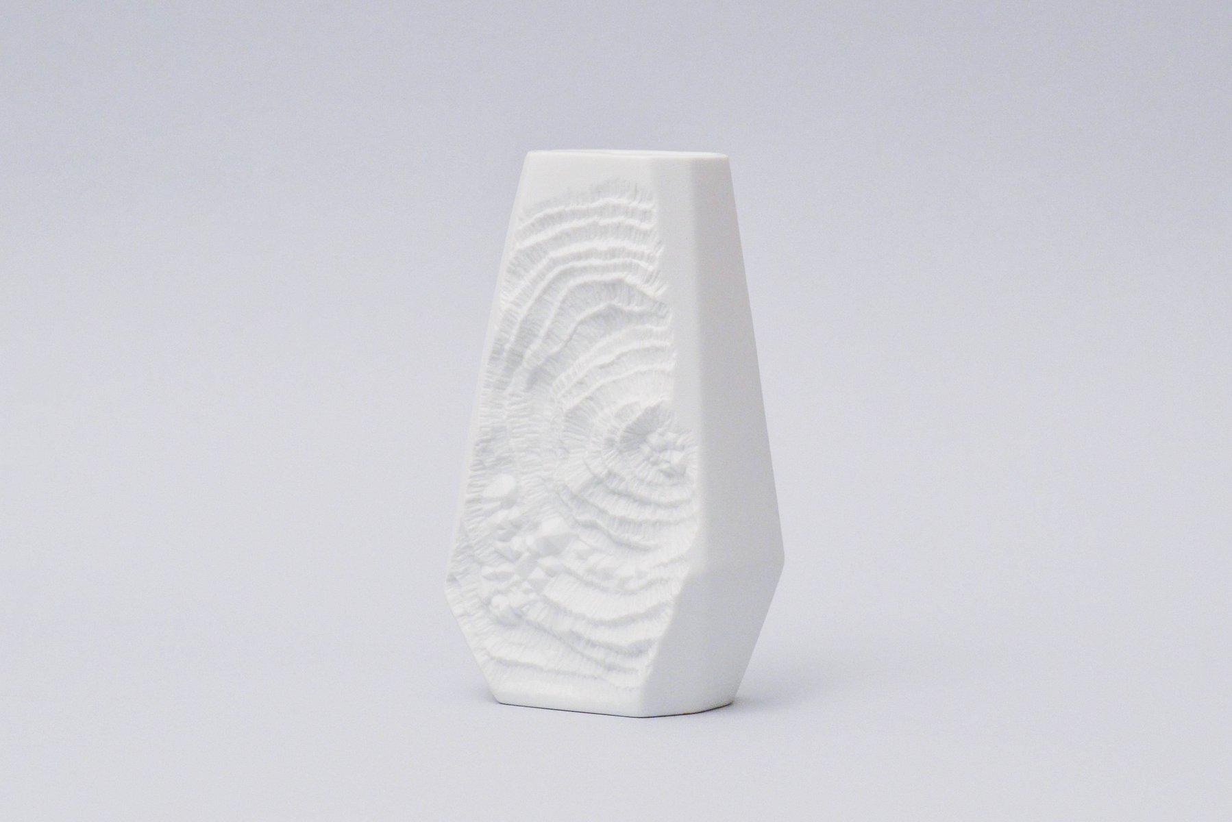 wei e vase aus biskuitporzellan mit fossilie dekor von. Black Bedroom Furniture Sets. Home Design Ideas