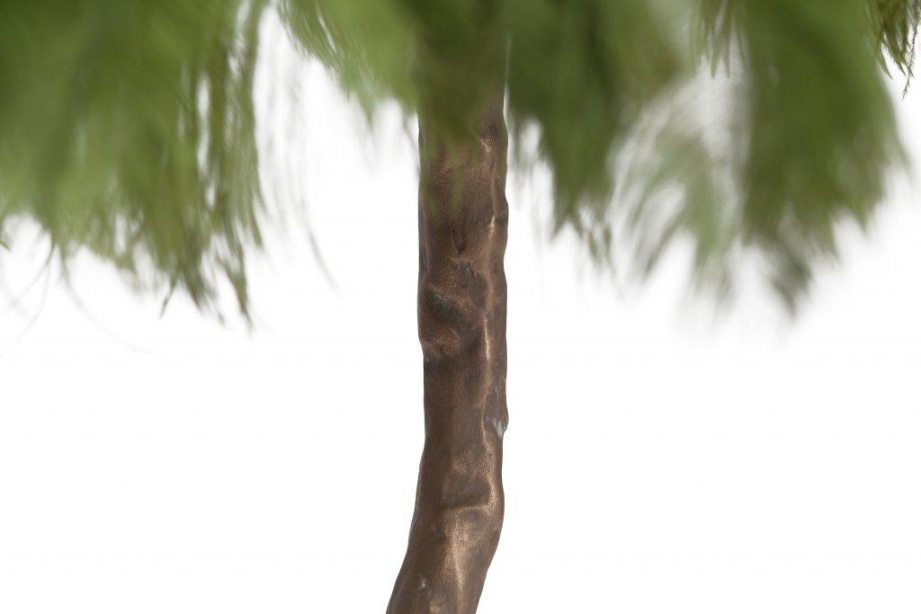 Ausgezeichnet Färbendes Bild Eines Baumes Ideen ...