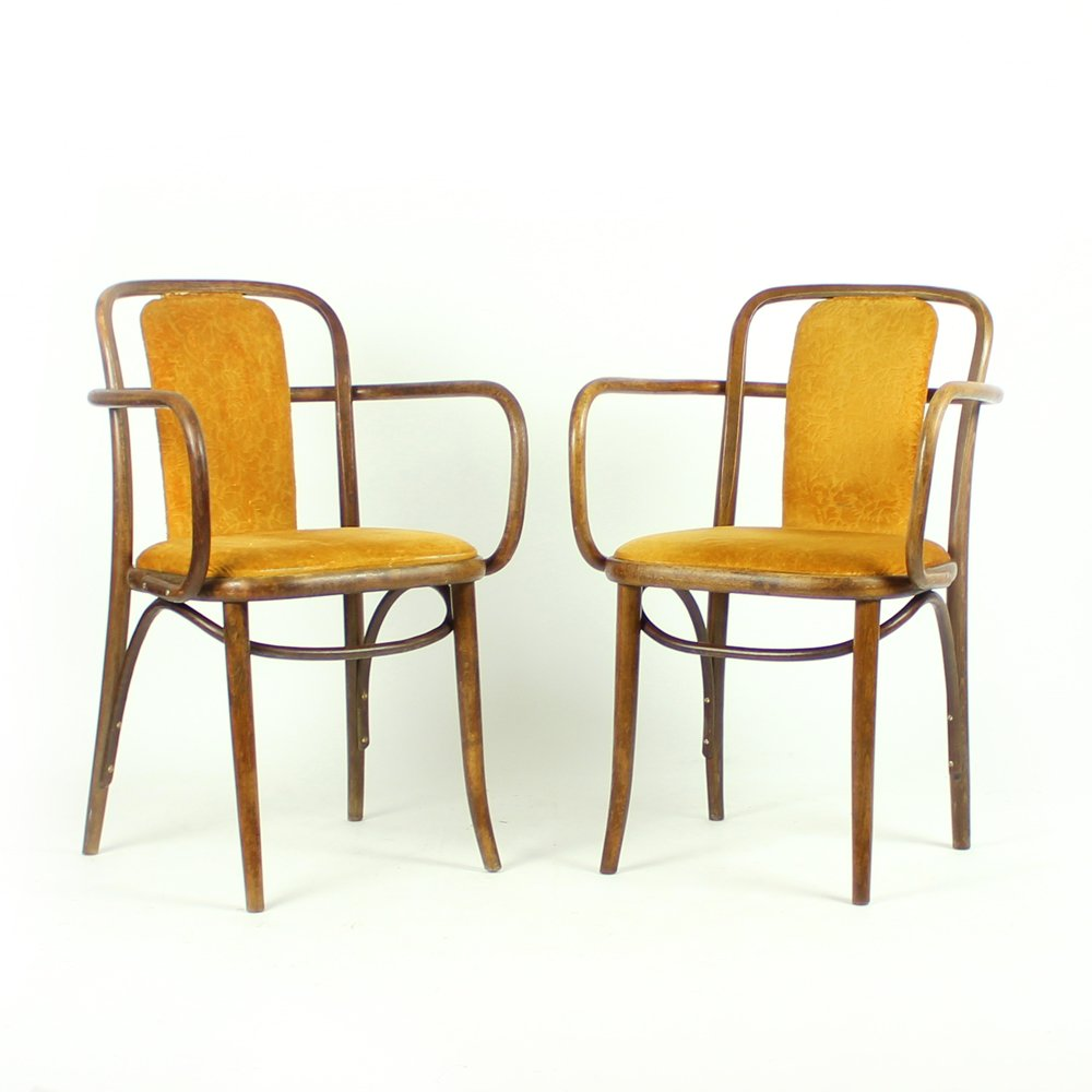 bugholz st hle mit goldenem samt von michael thonet 1920er 2er set bei pamono kaufen. Black Bedroom Furniture Sets. Home Design Ideas