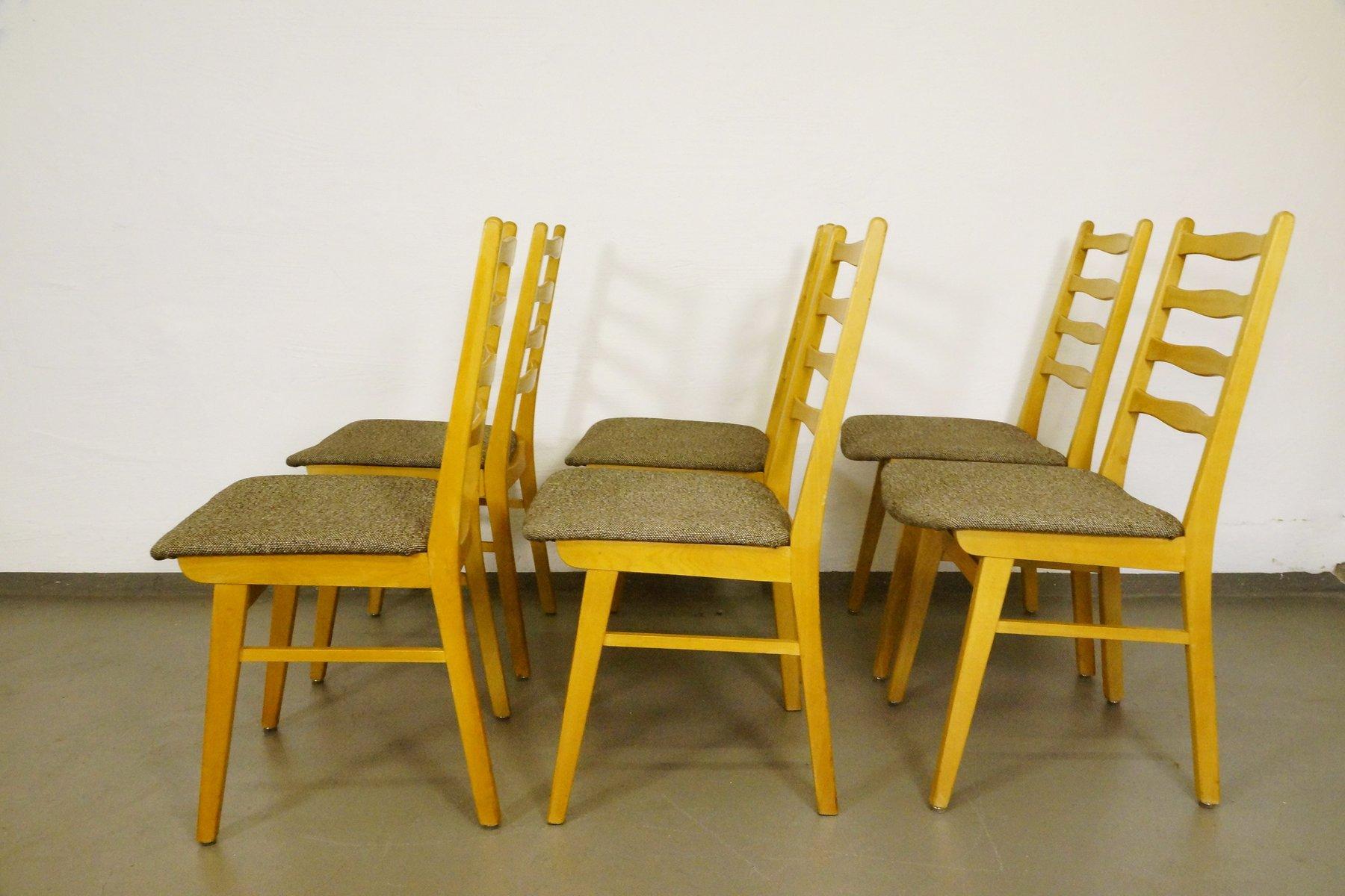 buchenholz st hle 1950er 6er set bei pamono kaufen. Black Bedroom Furniture Sets. Home Design Ideas