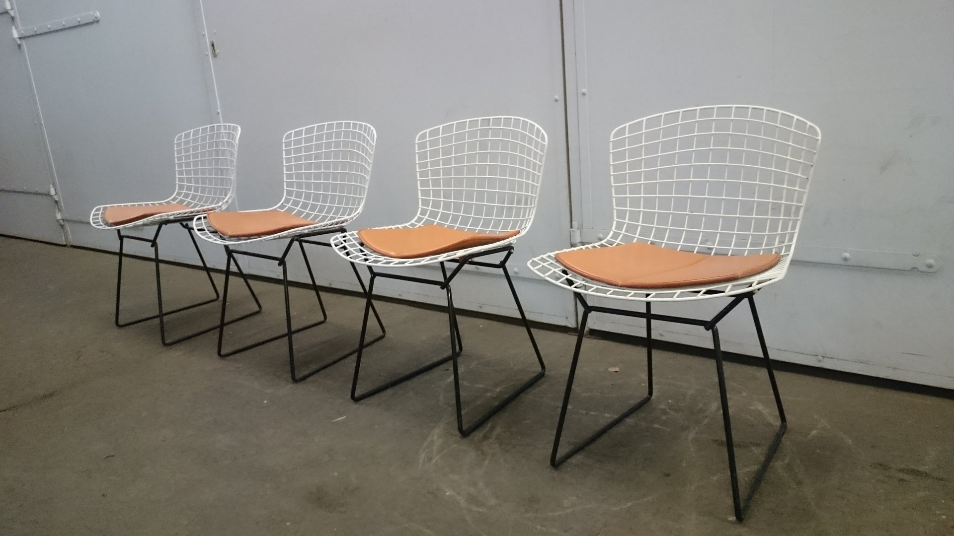 White U0026 Black Wire Chairs By Harry Bertoia For Knoll, Set Of 4 For Sale At  Pamono
