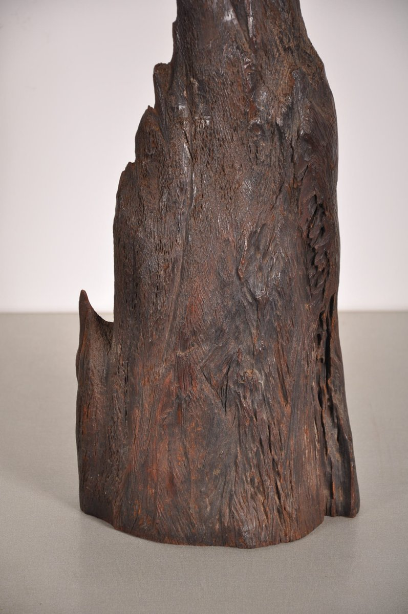 Vintage Tree Trunk Table Lamp For Sale At Pamono